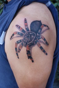 Wicked 3D Tarantula Tattoo on Arm